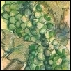 "GRAPES GREEN -- Artist: Christi Roberts Bony (Bo-nay) Size: 5"" x 7"" Medium: Watercolor Price: $115.00"