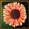 "ECHINACEA -- Artist: Sara Unrein Size: 10"" x 10"" Medium: Acrylic Price: $75.00"