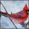 "RED BIRD -- Artist: Don Dane Size: 5"" x 7"" Medium: Watercolor Price: $200.00 ***SOLD***"