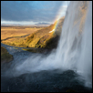 "LIGHT IN THE MIST -- Artist: Linda Hanley Size: 12"" x 8"" Medium: Photography Price: $200.00"