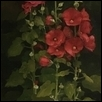 "HOLLYHOCKS RED AND PINK -- Artist: Debra Payne Size: 16"" x 48"" Medium: Oil Price: $1,200.00"