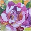 "ROSE -- Artist: Kathleen Anderson Size: 7"" x 5"" Medium: Watercolor Price: $100.00"