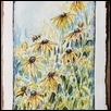 Bee and Black Eyed Susans