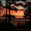 "A NEW DAY, A NEW JOURNEY -- Artist: Koral Martin Size: 30"" x 20"" Medium: Photography Price: $360.00"