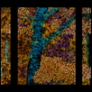"HE MADE THE TREES -- Artist: Carl Damico Size: 24"" x 54"" Medium: Acrylic Price: $3,500.00"