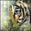 "HIDDEN TIGER -- Artist: Dustin Miller Size: 16"" x 20"" Medium: Acrylic Price: $700.00"