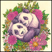 "GREAT PANDAS -- Artist: Erin Lavin Size: 4"" x 5"" Medium: Color Pencil / Ink Price: $110.00"