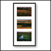 Camp Creek Triptych
