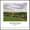 The Flint Hills by Mark Feiden & Jim Hoy