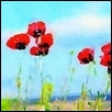 "POPPIES IN THE SKY -- Artist: Leah Lambart Size: 14"" x 11"" Medium: Watercolor Price: $250.00"