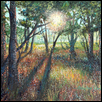 "LOESS BLUFFS SUNSHINE -- Artist: Holly Schenk Size: 10"" x 8"" Medium: Acrylic Price: $350.00"
