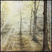 "MORNING GLOW -- Artist: linda kinder Size: 11"" x 14"" Medium: Watercolor Price: $300.00"