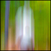 "GHOSTLY FIGURES -- Artist: Marty Porter Size: 10"" x 14"" Medium: Photography Price: $125.00 ***SOLD***"